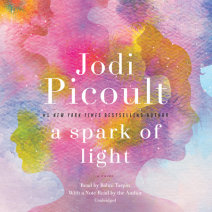 A Spark of Light Cover