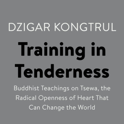 Training in Tenderness cover
