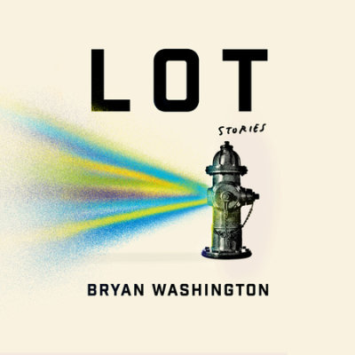 Lot cover