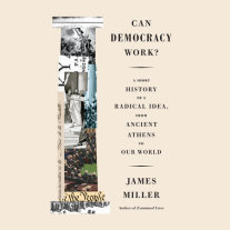 Can Democracy Work? Cover