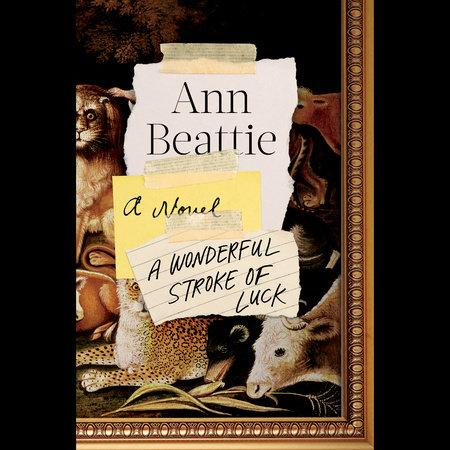 A Wonderful Stroke of Luck by Ann Beattie