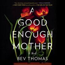 A Good Enough Mother Cover