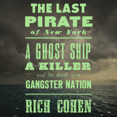 The Last Pirate of New York cover