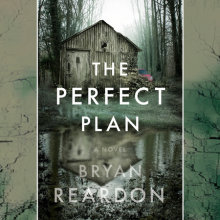 The Perfect Plan Cover