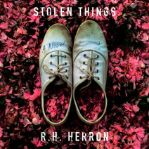 Stolen Things Cover
