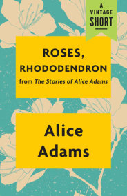 Roses, Rhododendron