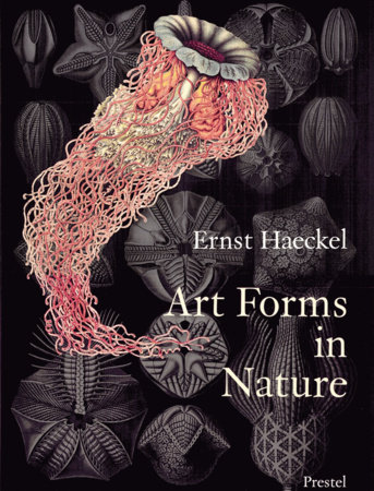 Art Forms in Nature by