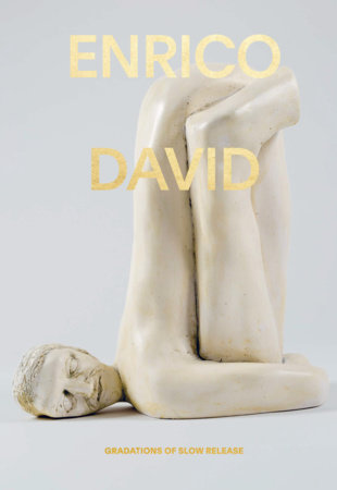 Enrico David by Michael Darling